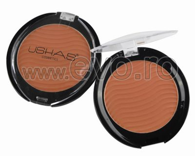 Pudra Minerala Matte Perfect Finish Ushas 01