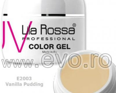 Gel color profesional 5g Lila Rossa - Vanilla Pudding (E 2003)
