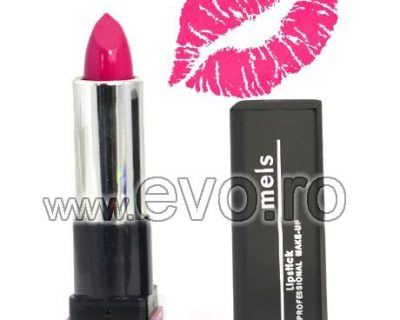 Ruj Hidratant - Professional Lipstick #04 - Berry Seduction + Rezerva